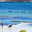 Paddle boards and kayaks enjoying the day by Ian Berry