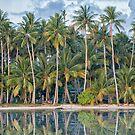 Tropical Palm Trees on Beach at Truk Lagoon by JohnKarmouche