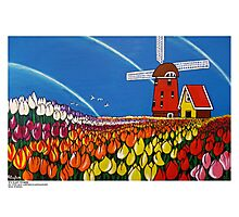 TulipTime,Netherlands. Photographic Print
