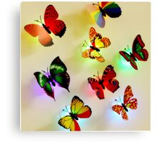 butterfly color Canvas Print