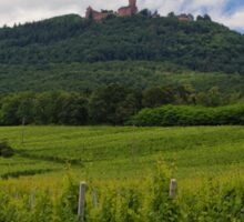 Haut-Koenigsbourg Castle and Surrounding Vineyards Sticker