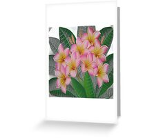 flowers pink Greeting Card