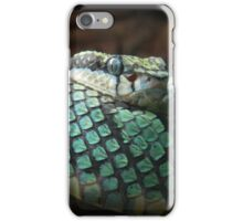 Green Pit Viper iPhone Case/Skin