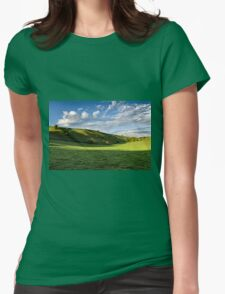 Longcombe Bottom, Bratton, Wiltshire, United Kingdom. Womens Fitted T-Shirt