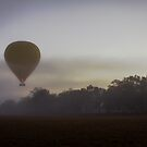 Mareeba Hot Air Ballooning 1 by Donna Rondeau