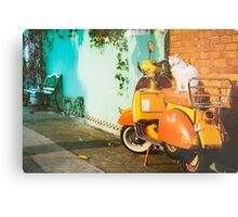 Cat on Bike Metal Print