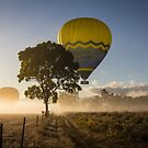 Mareeba Hot Air Ballooning 4 by Donna Rondeau