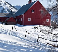 Old Snowmass Village Barn by phil decocco