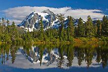 Mt. Shuksan Reflection by Barb White
