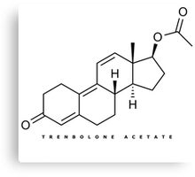 Bodybuilding : Trenbolone Acetate Canvas Print