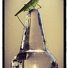 Grasshopper Visitor by Barbara Wyeth