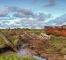 Wreckage ! by Irene  Burdell