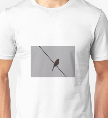 Red Cardinal on a Wire Unisex T-Shirt