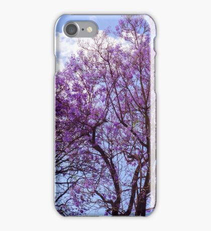 Dream of Spring  iPhone Case/Skin