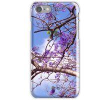 Dream of Spring  iPhone Case/Skin