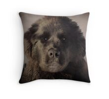 GRUMPY YES..BUT I CAN BE NICE! Throw Pillow