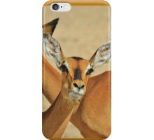 Impala - Funny Nature - African Wildlife Background iPhone Case/Skin