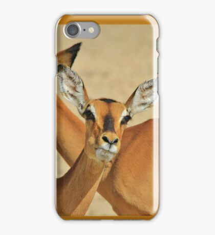Impala - Funny Nature - African Wildlife Background iPhone Case/Skin