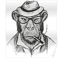 Hipster monkey with hat Poster
