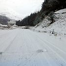 The back route  from Fort William to Ballchulish by trish725
