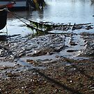 Tide going out........Lyme Dorset UK by lynn carter