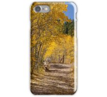 Afternoon Drive iPhone Case/Skin