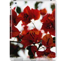 Bougainvillea At Joe's Secret Garden II iPad Case/Skin
