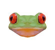 Geometric Frog Face Photographic Print