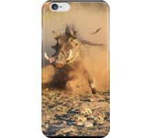 Warthog - Dust, Tusks and Hormones iPhone Case/Skin