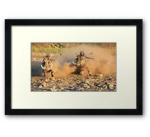 Warthog - Dust, Tusks and Hormones Framed Print