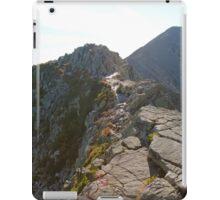 Reveal the Path iPad Case/Skin