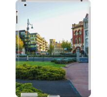 View Point and Alexandra Fountain iPad Case/Skin