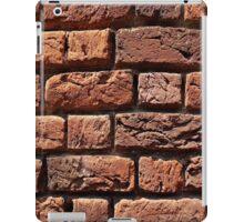 Red Brick iPad Case/Skin