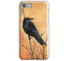 Sentinel crow iPhone Case/Skin