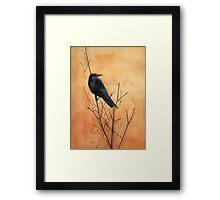 Sentinel crow Framed Print