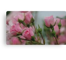 Pink Bouquet of Roses Canvas Print