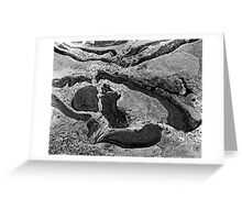 Rock Design Black And White Greeting Card