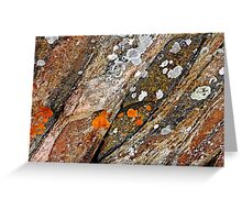 Lichen On Rock Greeting Card