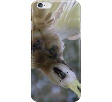 Crazy Cockatoo iPhone Case/Skin