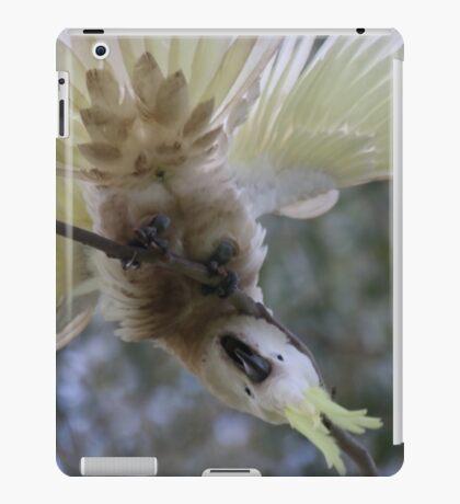 Crazy Cockatoo iPad Case/Skin