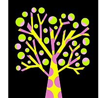 Simple colorful tree Photographic Print
