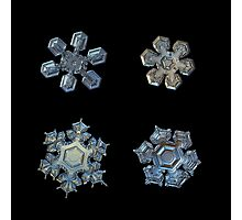 Four snowflakes on black background 2 Photographic Print
