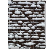 Snow Mesh iPad Case/Skin