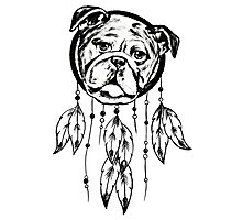 Funny Pug Dream Catcher Photographic Print