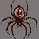 Spider eyes by resonanteye