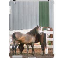 Horsetails iPad Case/Skin