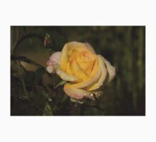 Golden Yellow Sparkles - a Fresh Rose With Dewdrops Kids Clothes