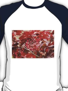 red maple T-Shirt