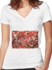 red maple Women's Fitted V-Neck T-Shirt