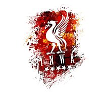 LiverBird Photographic Print